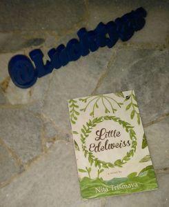 little edelweiss